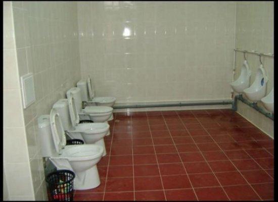 I Judge A Company By Its Bathrooms Rogish Reading Writing